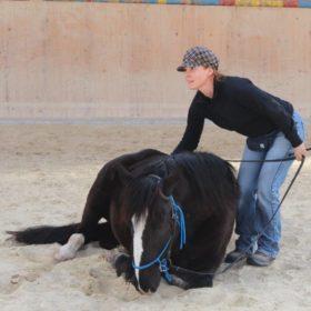 Zirkuslektionenkurs mit Peter Pfister 9. und 10. April 2015, besucht zusammen mit Tanja Eberle